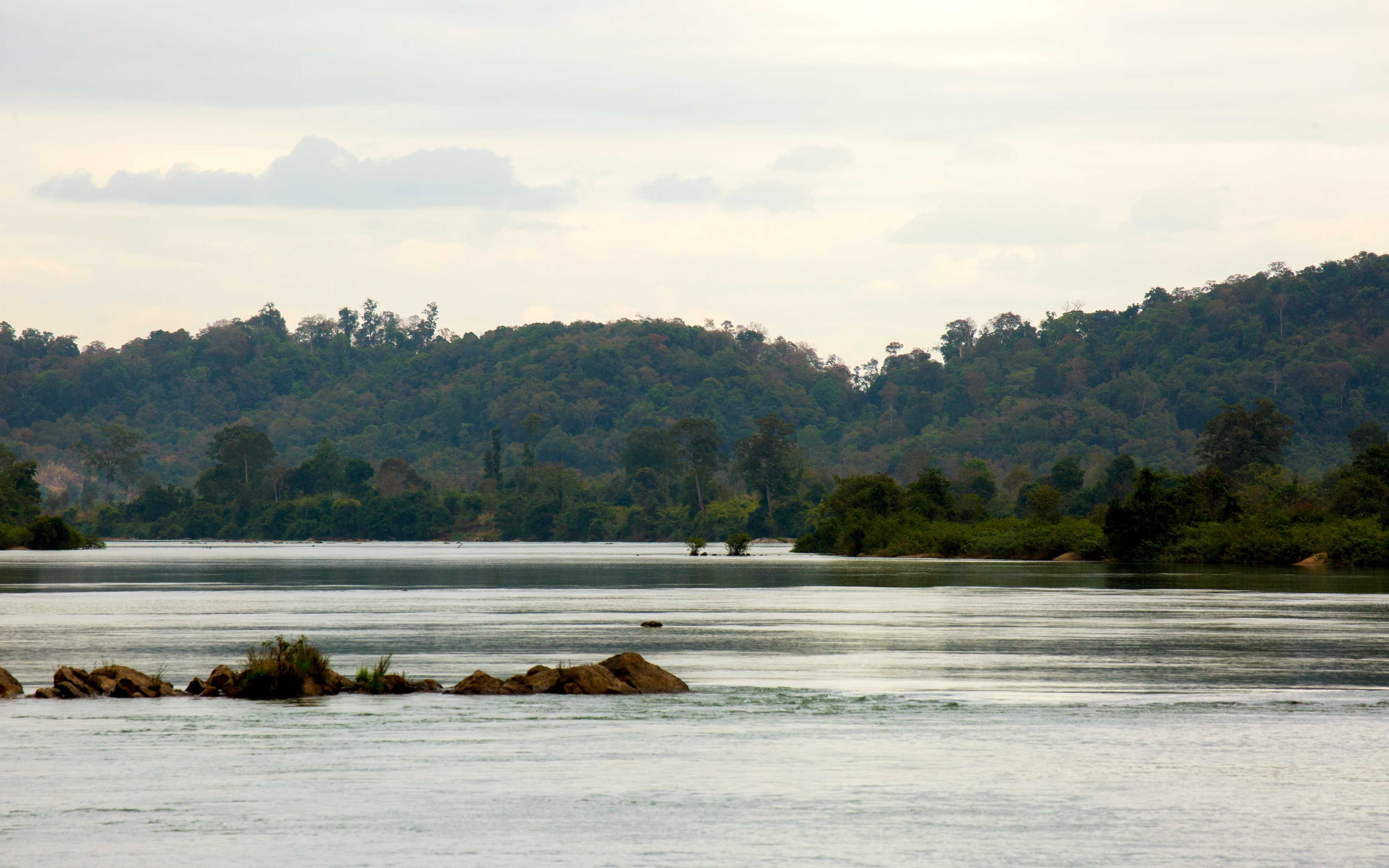 Jarai people in Padol are trying to protect their ancestral forest lands on both sides of the Sesan River in Ratanakiri province.