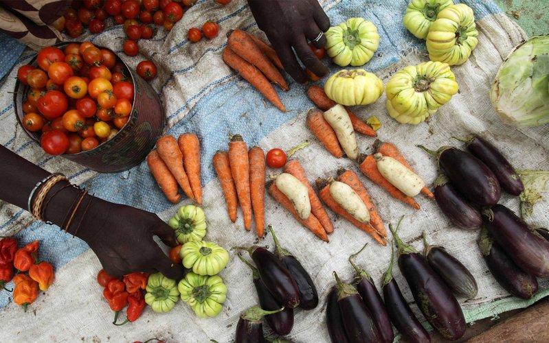 farmers-market-senegal-ous-28528.jpg