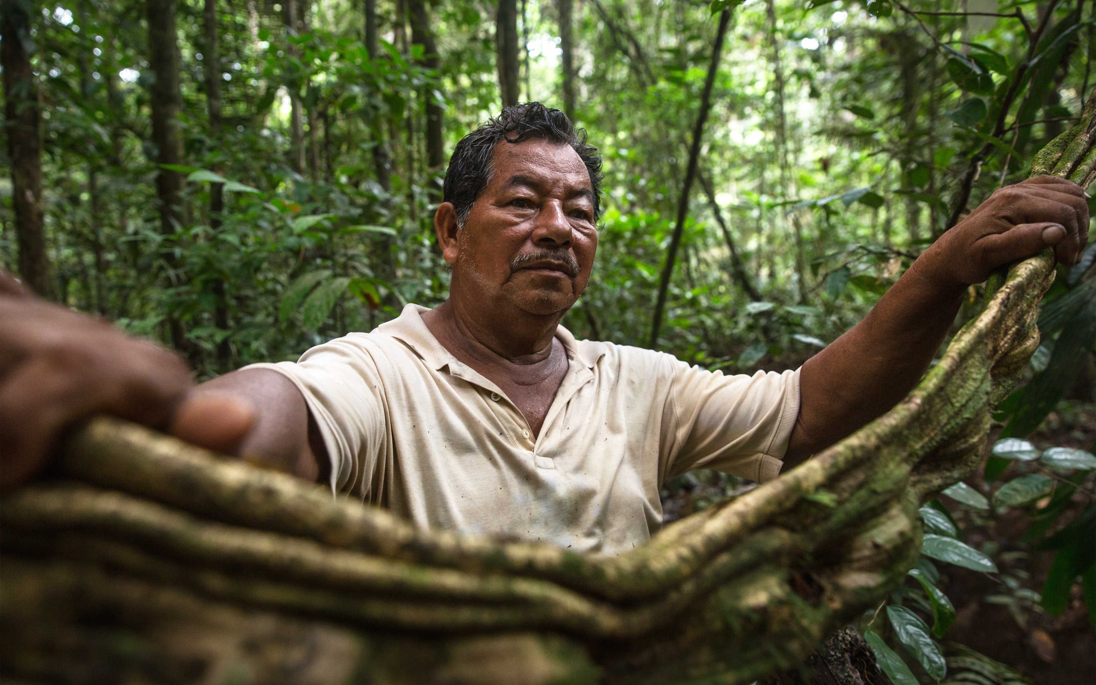 """Ruperto Vasquez, 64, has a 20-hectare farm near Tamshiyacu in Peru's northern Loreto province. He says that Cacao del Peru Norte began buying up land in this area, but that he and a few others refused to sell their land. """"We love nature, and we need our government institutions to help our efforts to preserve it."""""""