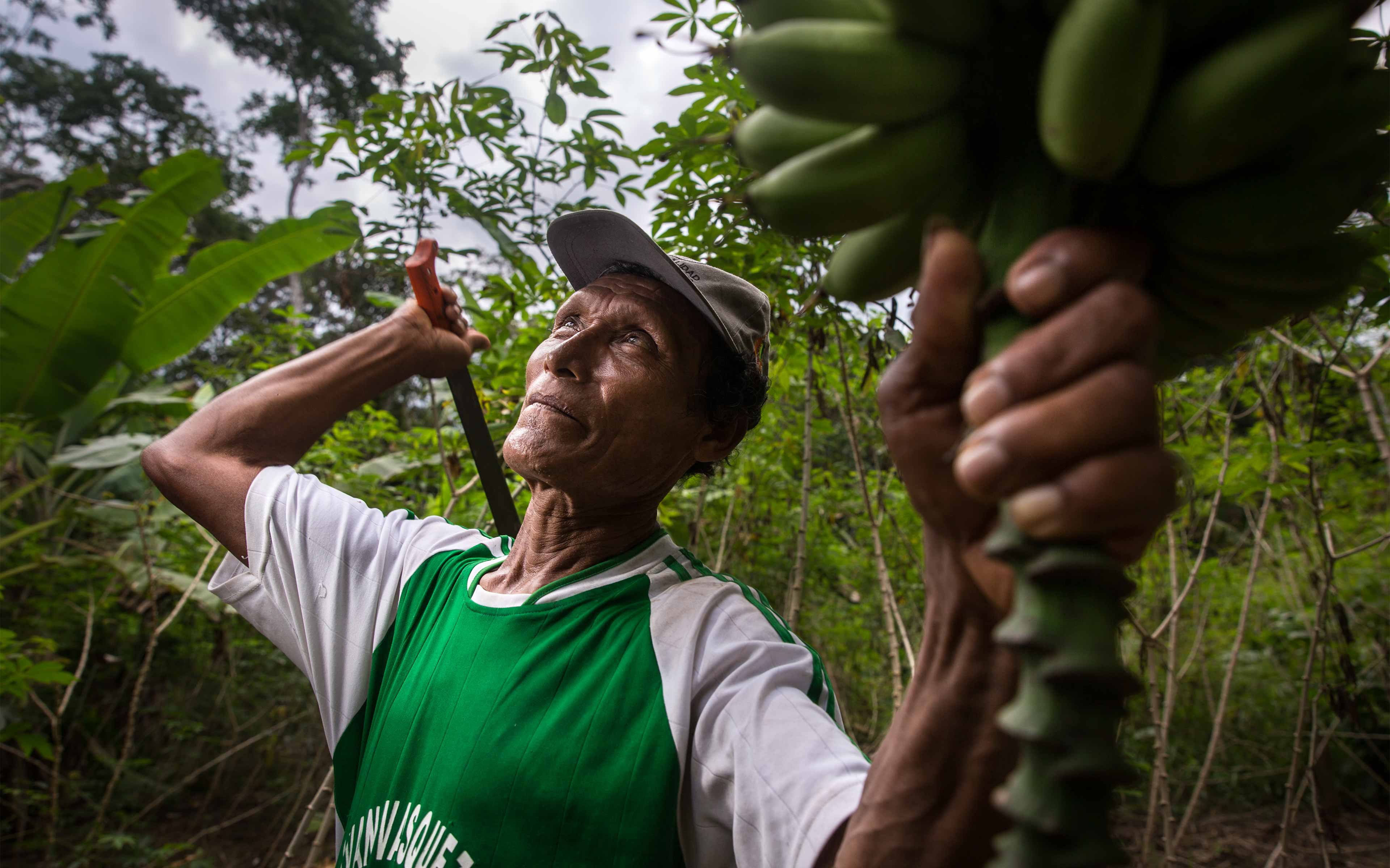 Adriano Panaifo, 62, is one of the leaders of Panguana, a fishing and farming community in Loreto.