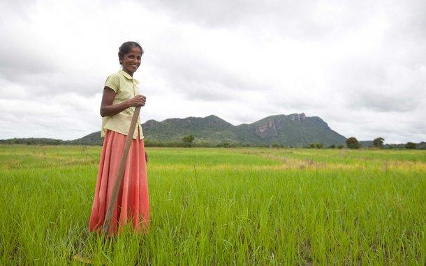 woman-farmer-irrigated-land-sri-lanka-oau-48239.jpg